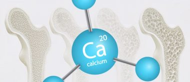 the effects of calcium in osteoporosis risk 2