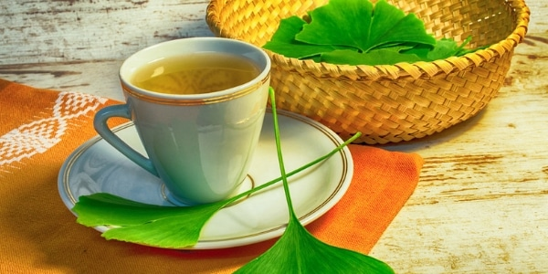 How Ginkgo Biloba Aids with Aging 1