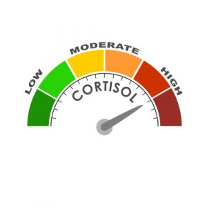 How to Manage Cortisol Levels Naturally 1
